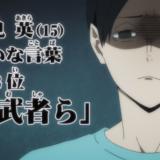 最近見たアニメ(ハイキュー!! 4期、異種族レビュアーズ、シートン